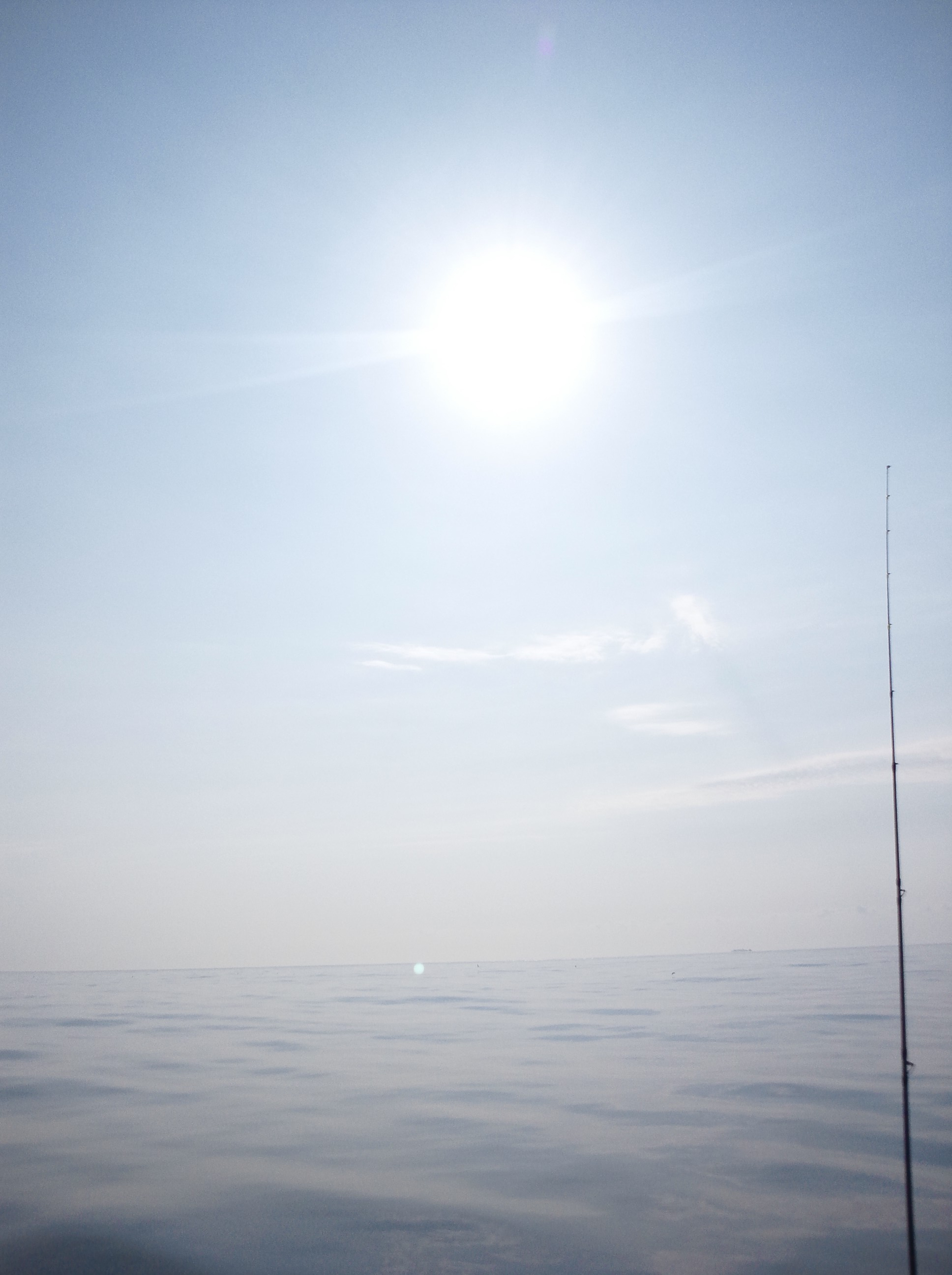 5月30日(水)AMマダイ釣果